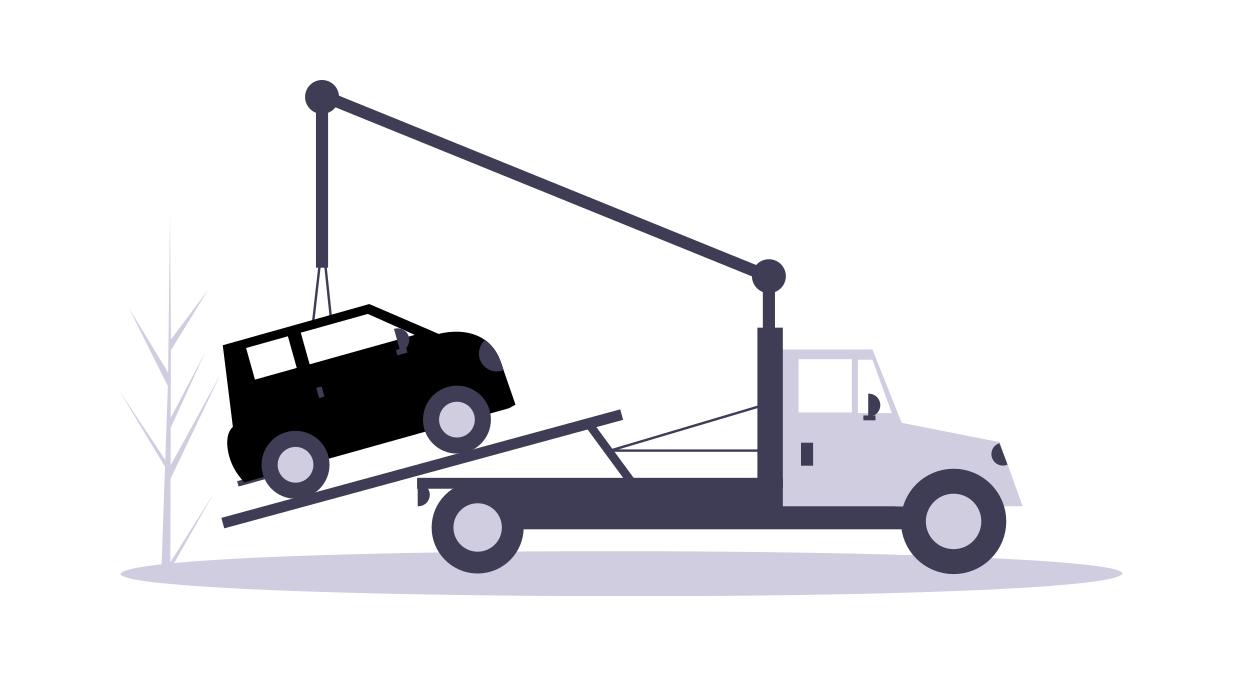 توفير وسائل نقل السيارات من مكان شرائها إلى أماكن الشحن.